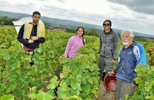 Côtes du Couchois, entre Côte de Beaune et Côte Chalonnaise